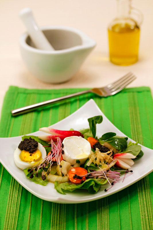 Recipes for cooking: salad with cheese and olive sauce with extra virgin olive oil Spelunca Espluga Calba DO Garrigues